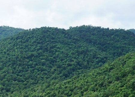 Hill Station Tours in Odisha
